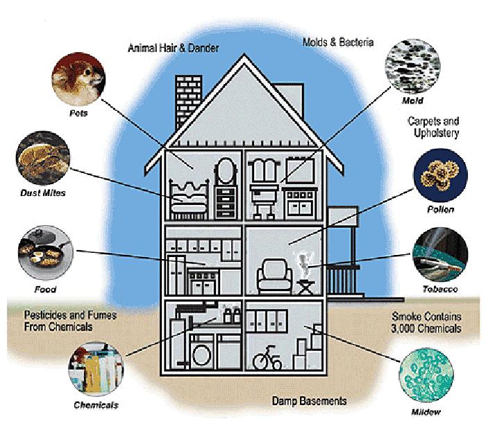 Các tác nhân gây ô nhiễm trong nhà